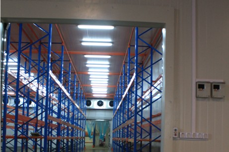 Cold store racking